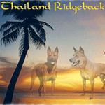thairidgeback.png